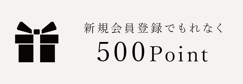 新規会員登録でもれなく500point