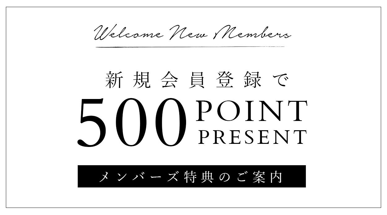 入会特典:新規会員登録で500ポイントプレゼント